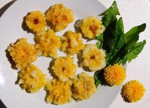 Kwiaty w cieście - przepis na kwiaty mniszka lekarskiego w cieście naleśnikowym