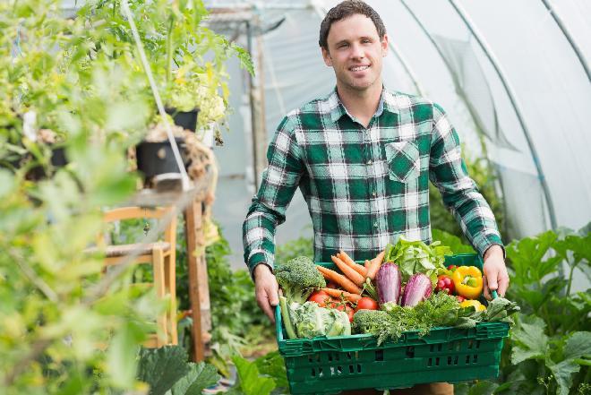 Jak rozpoznać żywność ekologiczną?
